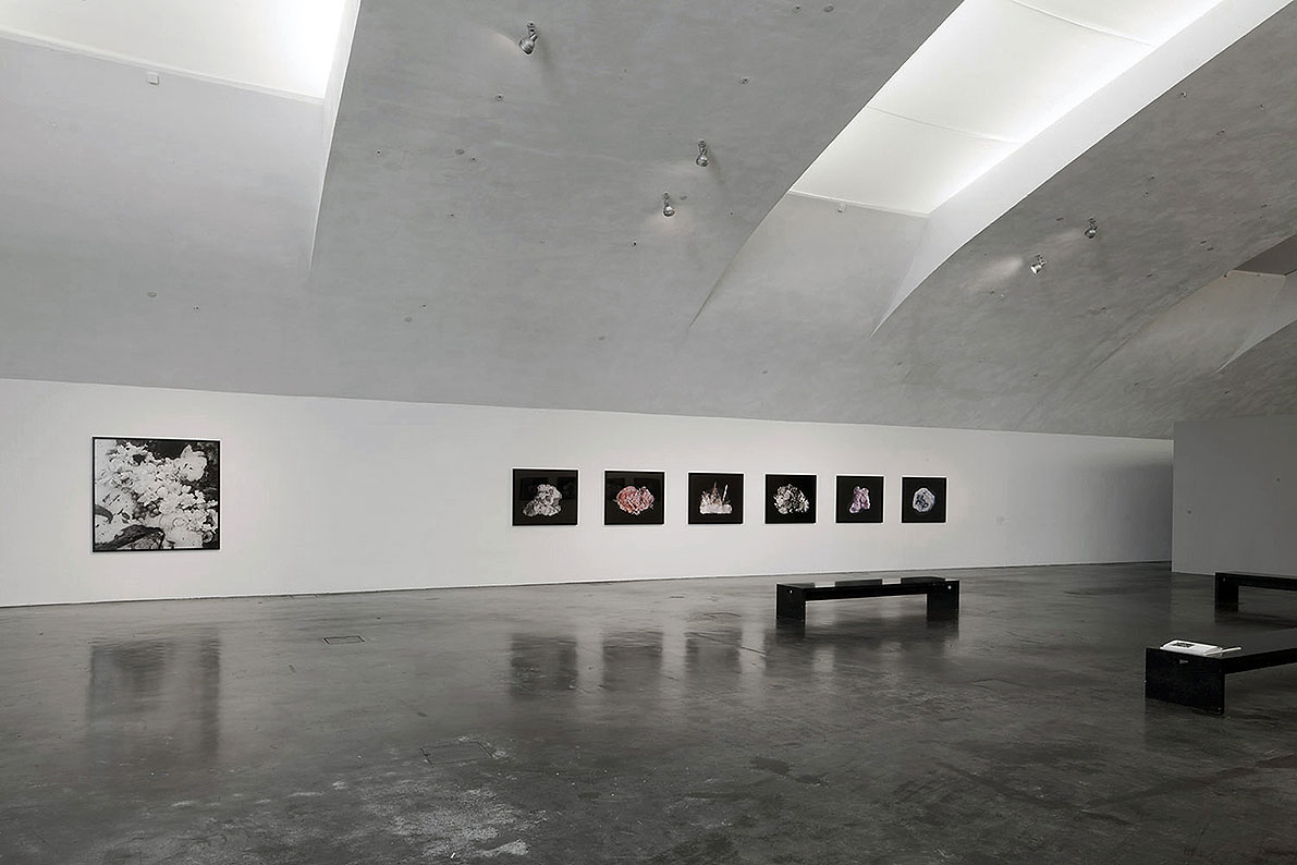 Exhibition view of 5th floor