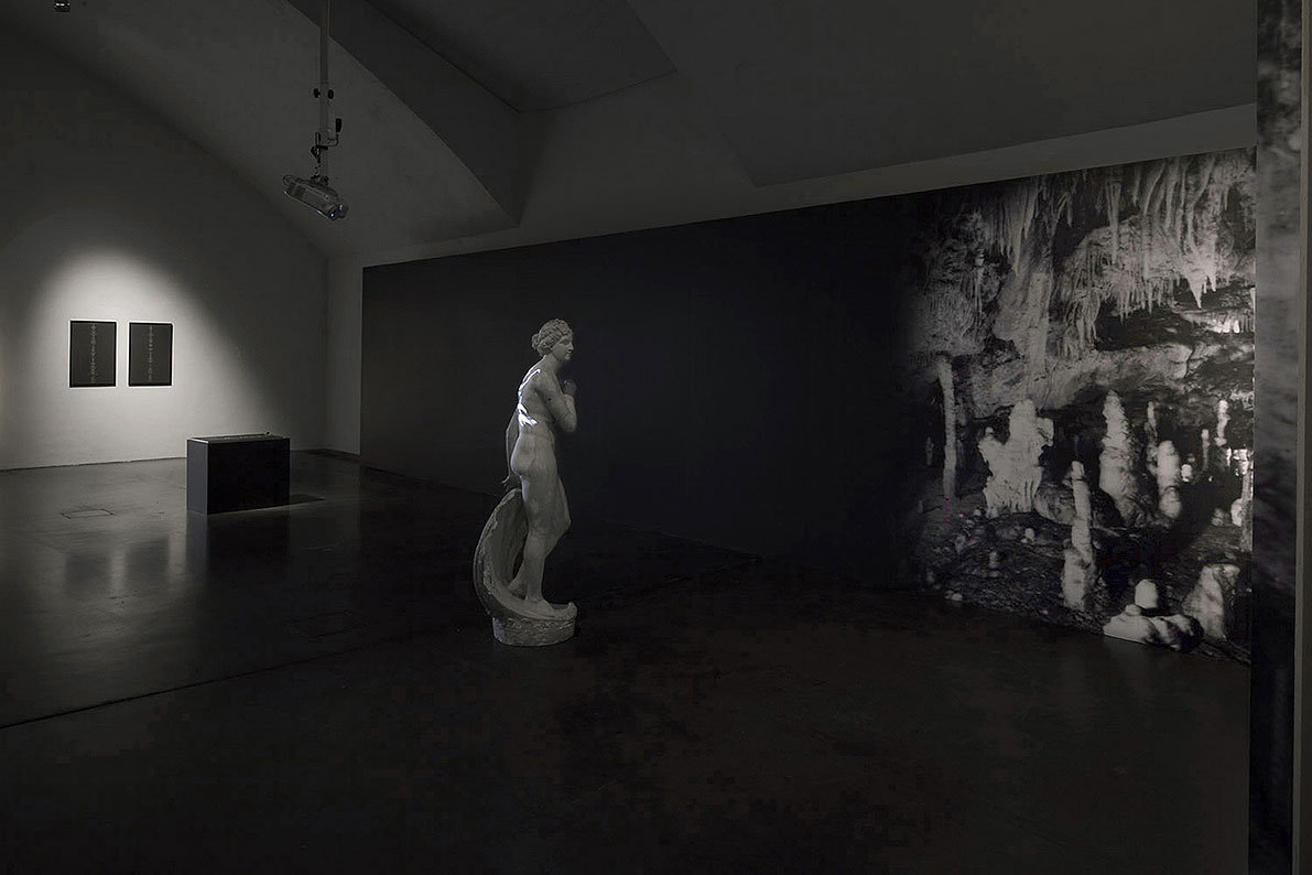 Cave, 2011, Installation with statue, inkjet print wallpaper, tomography of the brain's blood vessels - transferred on a DVD, posters with text