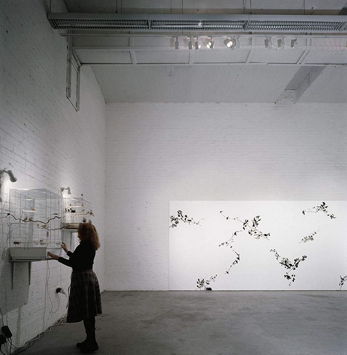 Installation view of the exhibition The Last Branch
