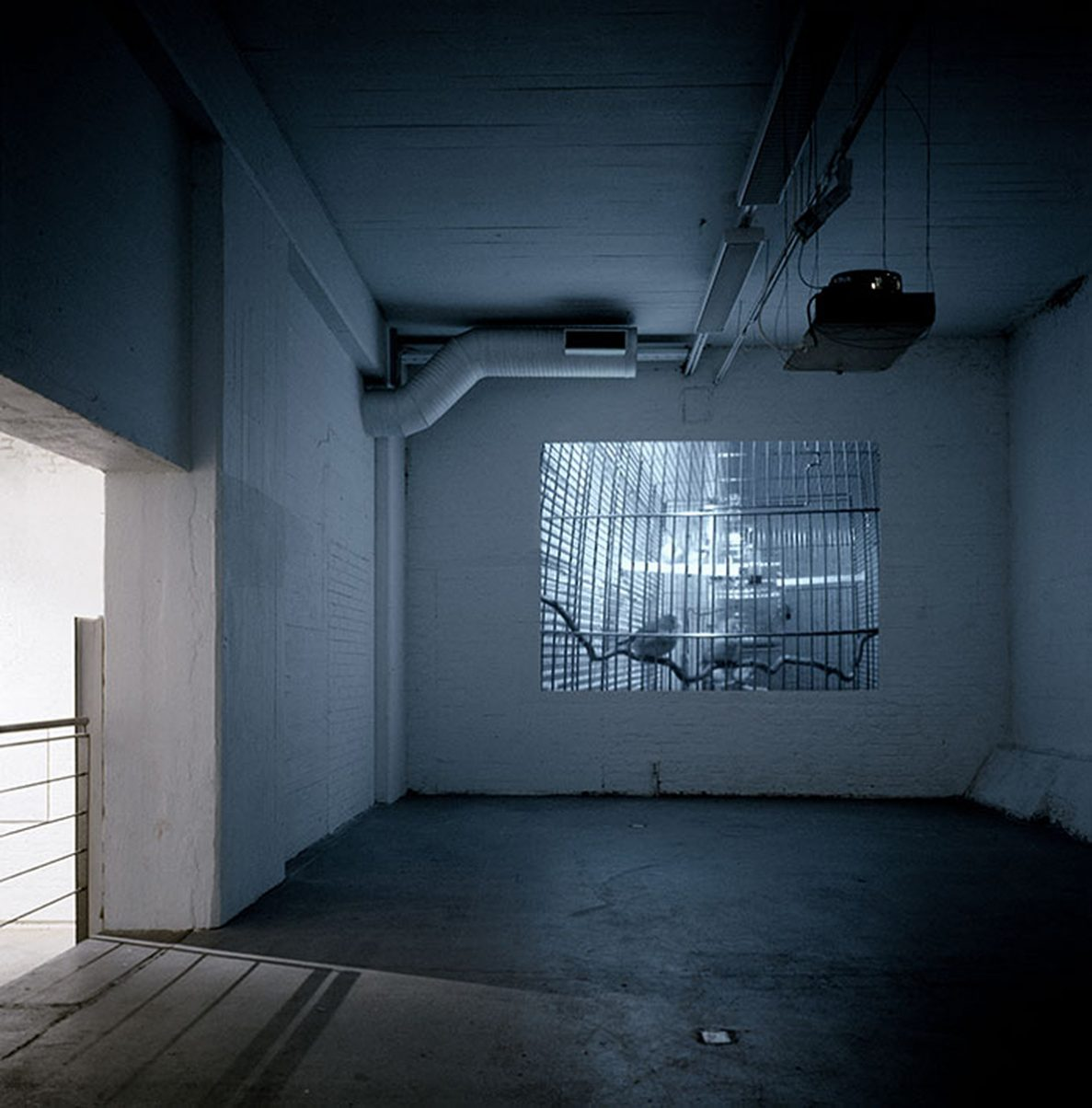 video projection with live feed from the surveillance camera, 200 x 300 cm