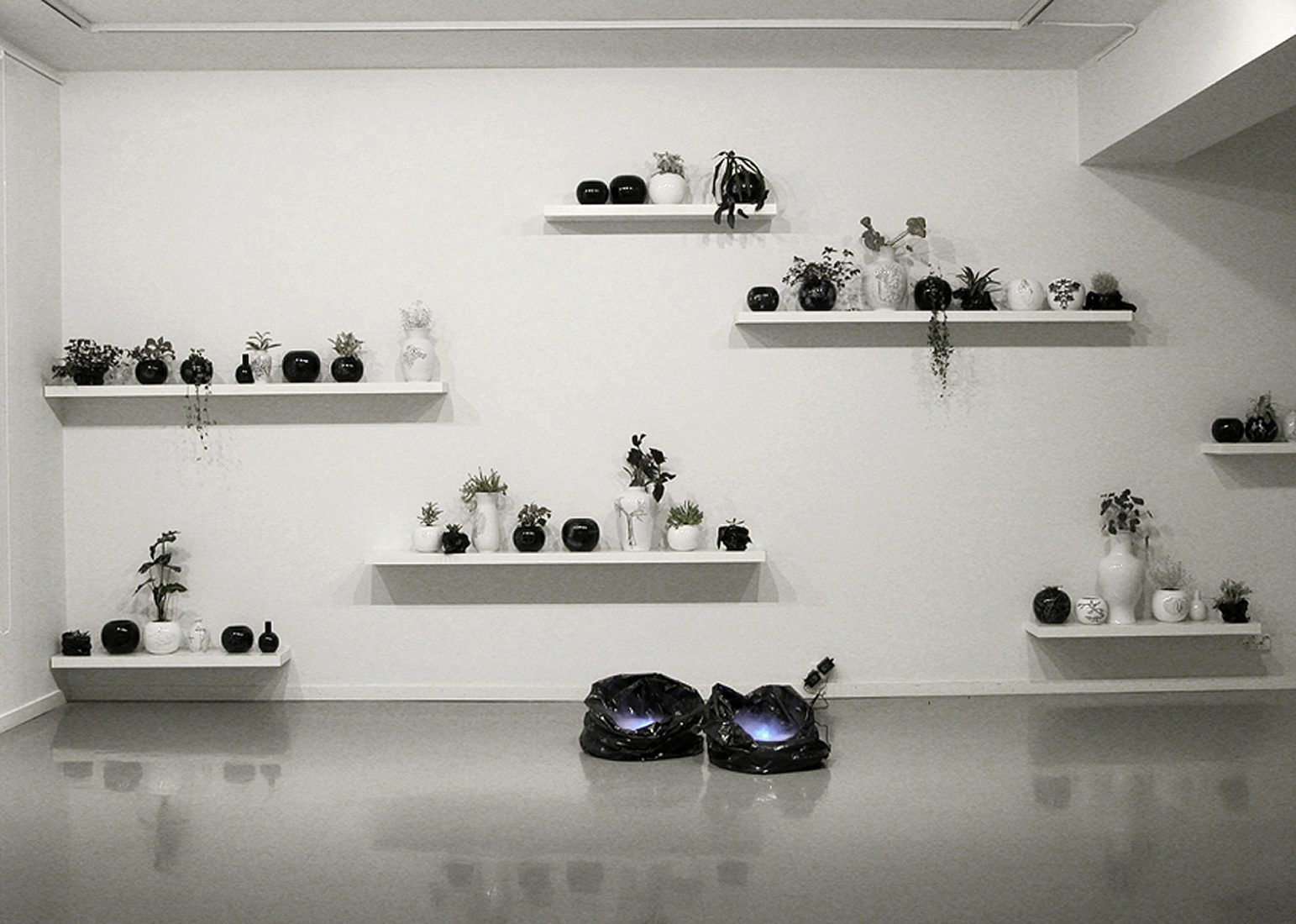 Grotesque & Arabesque, installation view: hand painted porcelain vases, plants, trash bags, air humidifiers, water