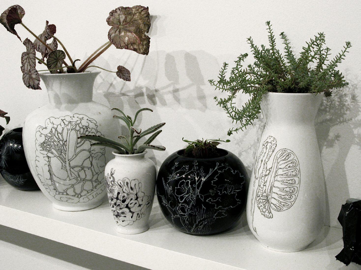 Hand painted porcelain vases, plastic bags, plants