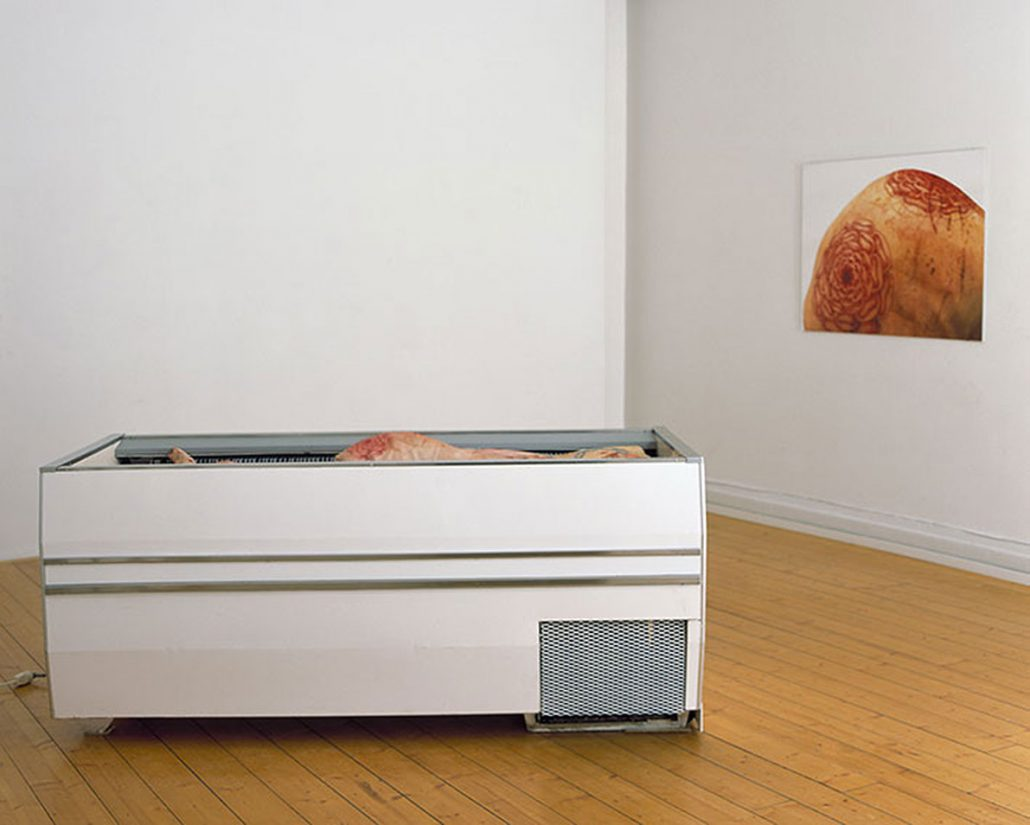 Carnation, 12 tattooed pig hams, chest freezer, digital print
