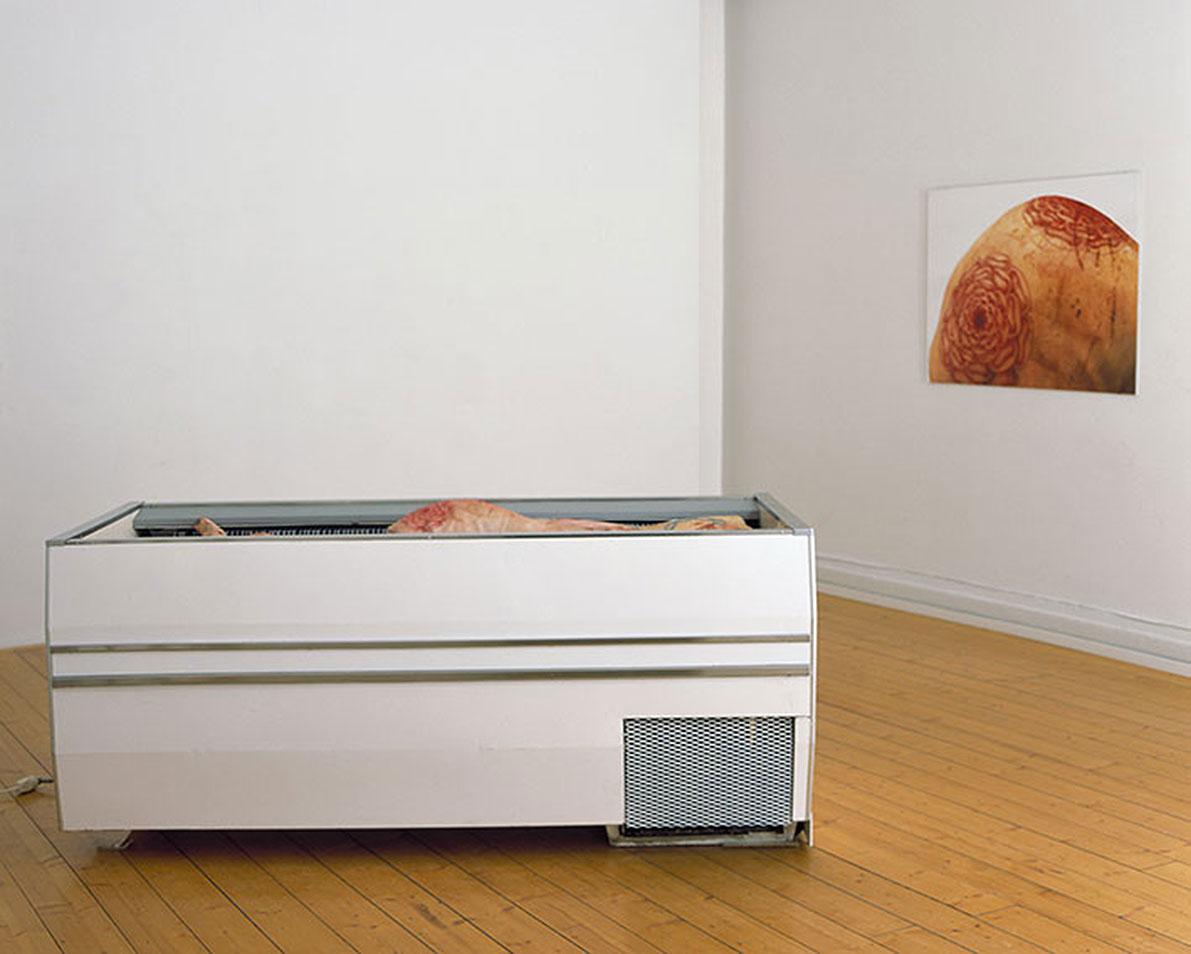 Carnation, 12 tattooed pig hams, chest freezer, digital print